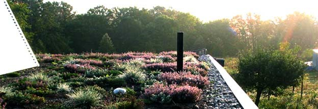 This living roof is a model of sustainablility