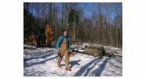 Evolve carpenter harvesting his own wood sustainably