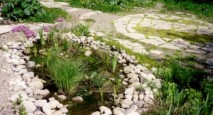 This constructed wetland is for greywater treatment